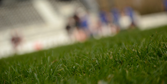 generique provence rugby