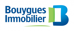 bouygues png